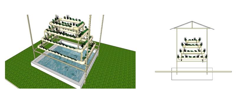 Desain dan Rancangan Awal Aquaponic